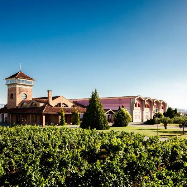 Bodegas Viña Ijalba - Logroño