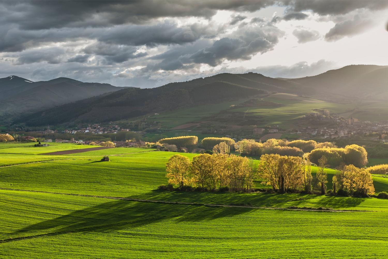Campos de Berceo, Estollo y San Millán de la Cogolla